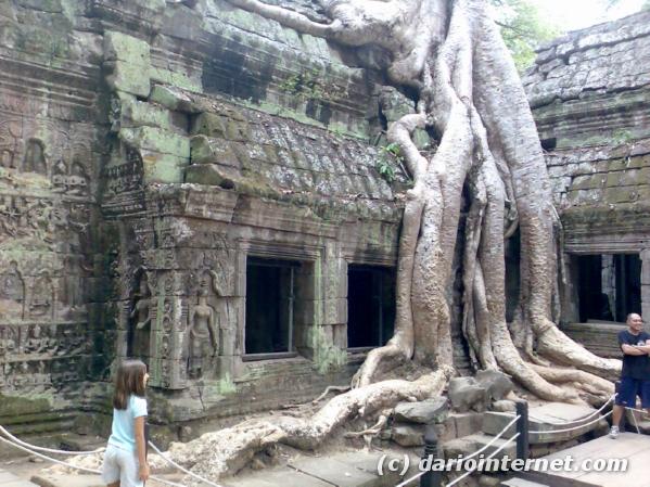 tr_angkor_en022_jungle